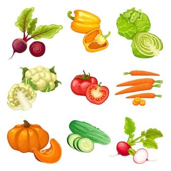 Conjunto de verduras orgánicas de dibujos animados