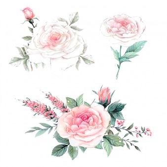 Conjunto vintage acuarela rosas rosadas.