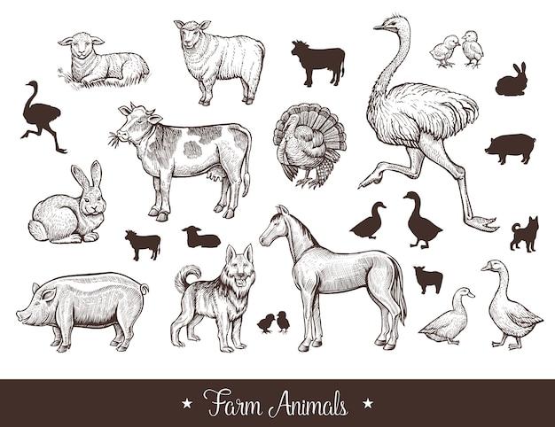 Conjunto vintage de animales de granja.