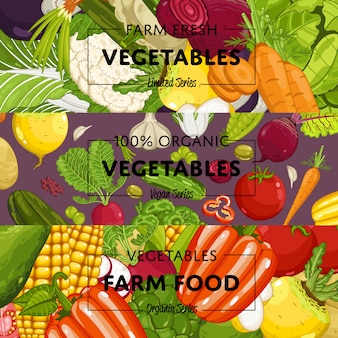Conjunto de volantes de cultivo de hortalizas orgánicas