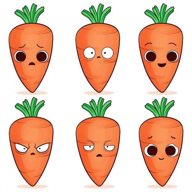 Conjunto de zanahoria linda