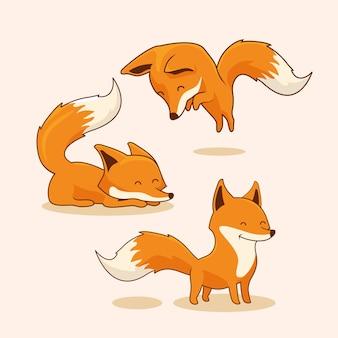 Conjunto de zorro rojo de dibujos animados de zorro