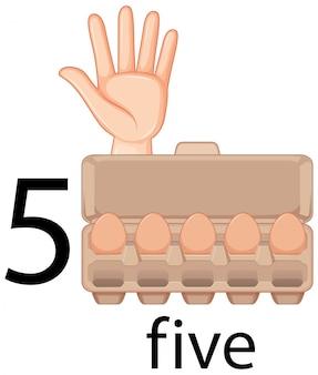 Contando el número cinco con gesto de la mano y huevos en cartón
