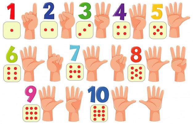 Contando números con manos y puntos sobre fondo blanco.