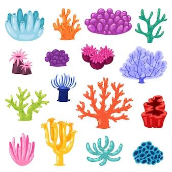Coral coralino o exótico cooralreef ilustración submarina conjunto coralloidal de fauna marina natural en arrecifes oceánicos sobre fondo blanco
