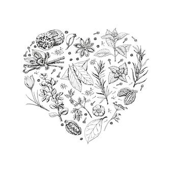 Corazón aislado de especias y hierbas.