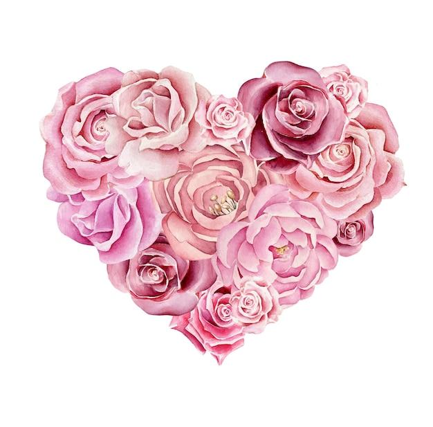 Corazón de rosas acuarela aislado en blanco