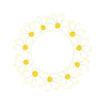 Corona de flor de cosmos blanco