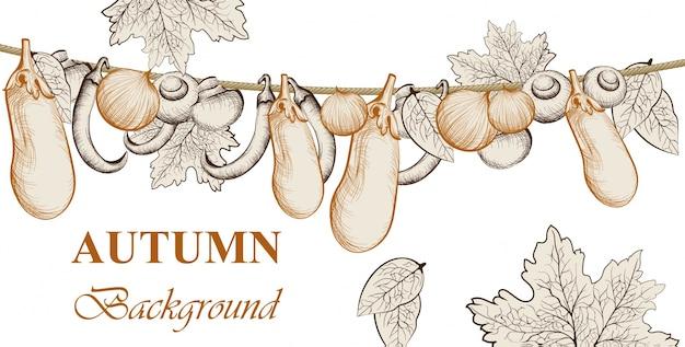 Cosecha de otoño. berenjena, tomates y verduras de cebolla fondo de vector. ilustraciones de estilo gráfico dibujado a mano de arte lineal