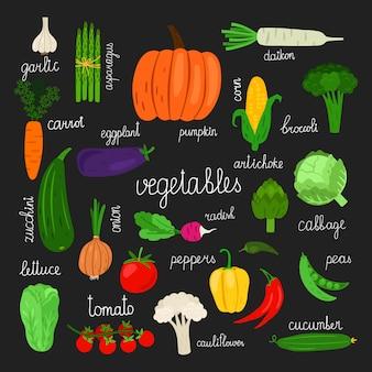 Cosecha, verduras frescas de ilustración conjunto