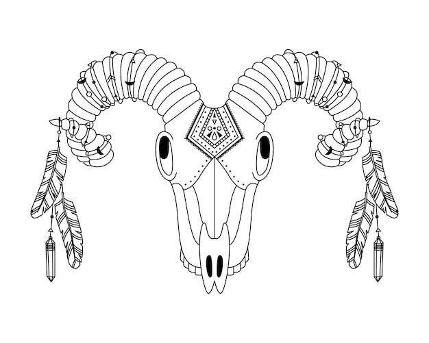Cráneo de animal en estilo boho con adornos geométricos y plumas de pájaro. ilustración tribal en estilo sencillo.