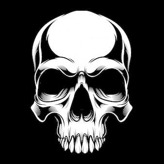 Cráneo blanco y negro