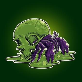 Cráneo de cangrejo ermitaño