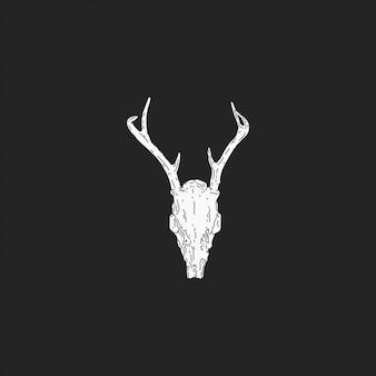 El cráneo de ciervo