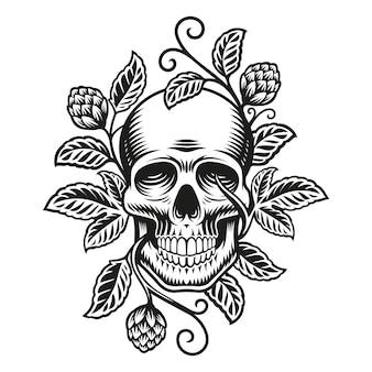 Cráneo con ramas de lúpulo aislado en blanco