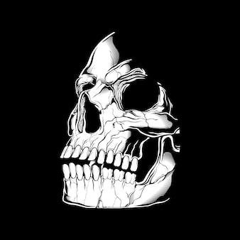 Cráneo retro, vintage, detalle dibujo a mano, aislado