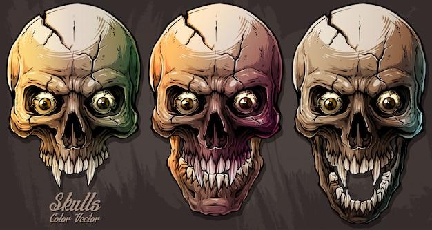 Cráneos humanos coloridos gráficos detallados establecidos