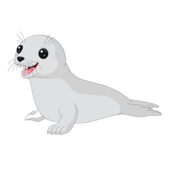 Cría de foca de dibujos animados sobre fondo blanco