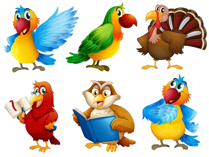 Criaturas de plumas de colores