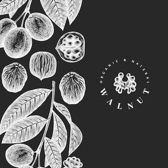 Croquis dibujados a mano plantilla de nogal. ilustración de alimentos orgánicos en pizarra. ilustración de tuerca vintage.