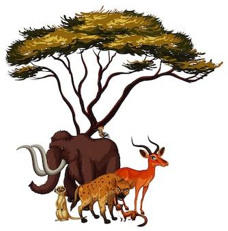 Cuadro aislado de animales debajo del árbol