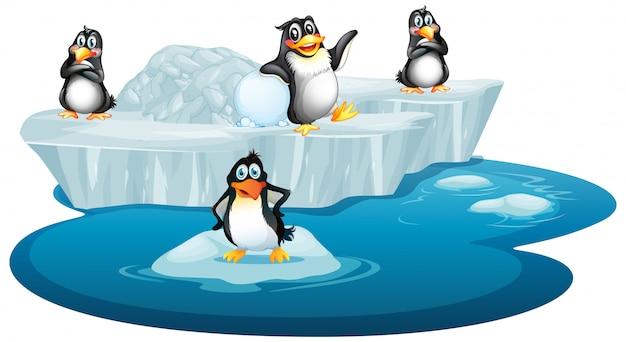 Cuadro aislado de cuatro pingüinos