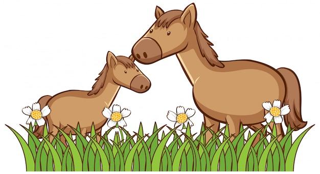 Cuadro aislado de dos caballos