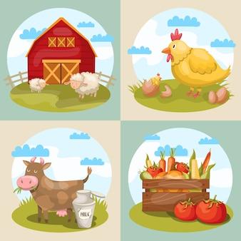 Cuatro composiciones cuadradas con varios símbolos de granja de dibujos animados, animales de almacén, pollo de vaca, corderos y verduras
