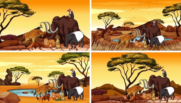 Cuatro escenas con animales africanos en el campo.