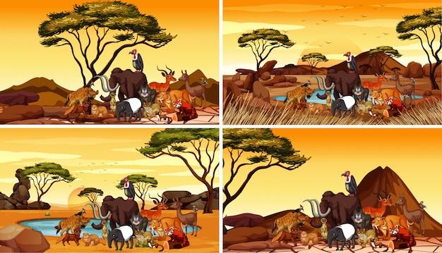Cuatro escenas con animales en el campo.