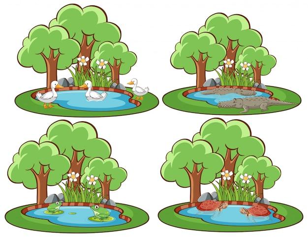 Cuatro escenas de bosque con muchos animales.