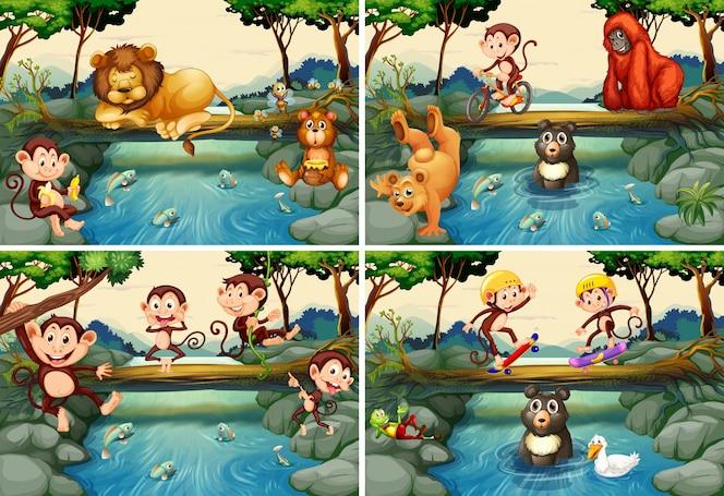 Cuatro escenas con animales salvajes en el río