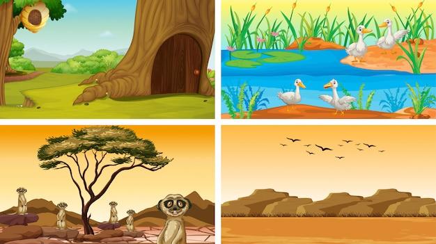 Cuatro escenas de la naturaleza con animales.