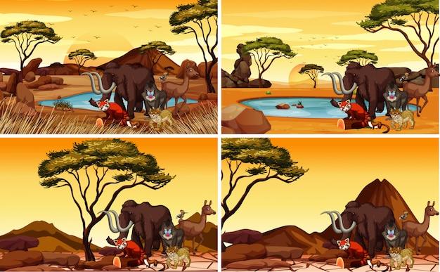 Cuatro escenas de sabana con muchos animales.