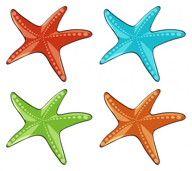 Cuatro estrellas de mar en diferentes colores.