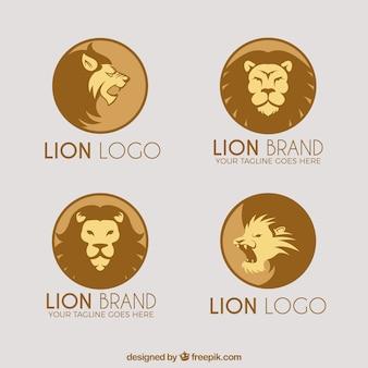 Cuatro logotipo león, formas circulares