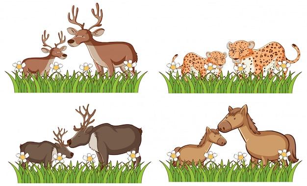 Cuatro tipos de animales en el jardín.