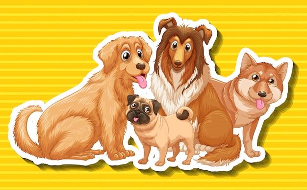 Cuatro tipos diferentes de perros.