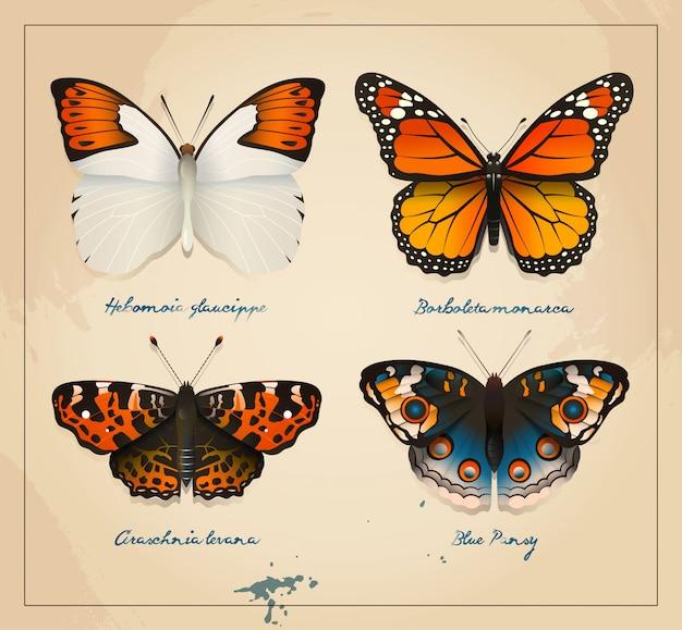 Cubierta de mariposas vintage