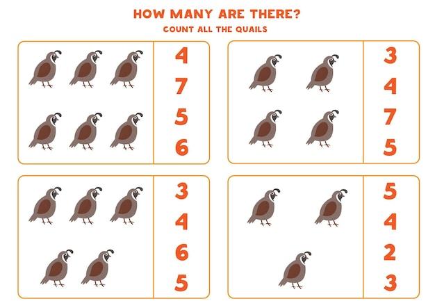 Cuente todas las codornices y empareje con la respuesta correcta. juego educativo de matemáticas para niños.