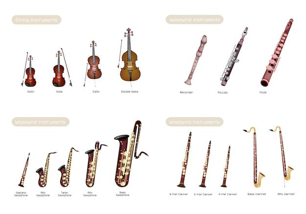 Cuerdas de instrumento y instrumento de viento de madera sobre fondo blanco