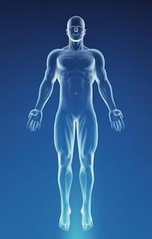 Cuerpo de anatomía humana azul