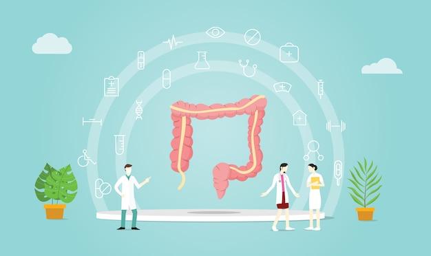 Cuidados del colon humano con médico.