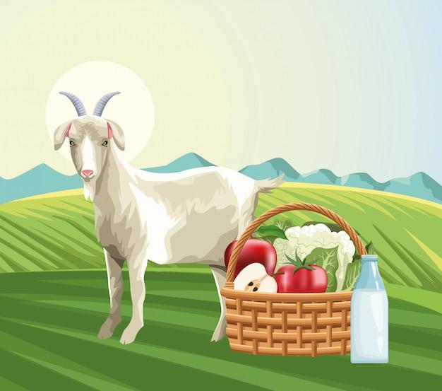 Cultivo de cesta de cabra con frutas verduras y botella de leche en la hierba