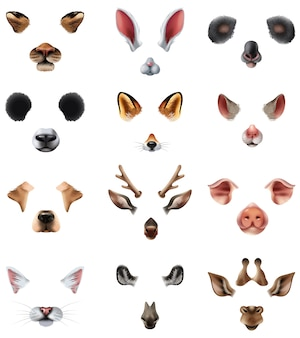Cute animal masks video chat aplicación efecto filtros set