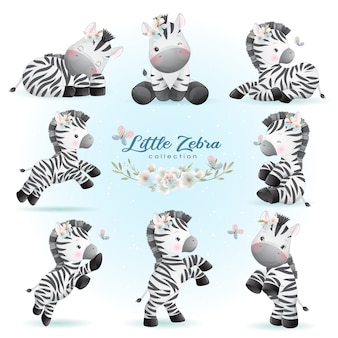 Cute doodle zebra posa con colección floral