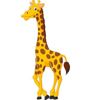 Cute jirafa de dibujos animados