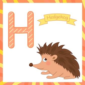 Cute niños animal alfabeto h letra flashcard de hedgehog para niños que aprenden vocabulario en inglés.