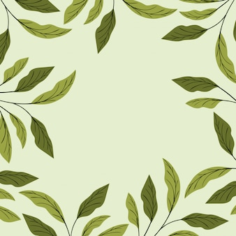 Decoración de marco natural de hojas verdes.