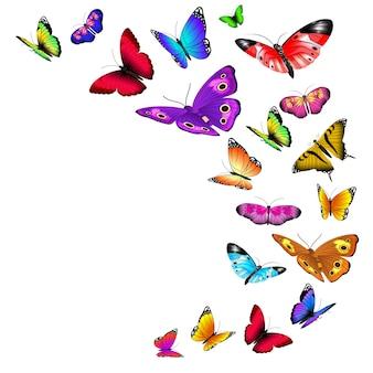 Decoración de mariposas volando